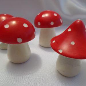 Mushrooms - Kisii Stone